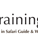 Into the wild we go with EcoTraining, the latest member to join WYSE Travel Confederation.